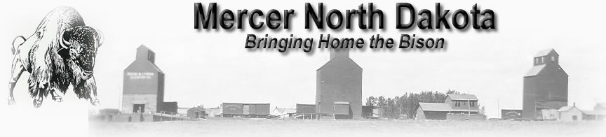 Mercer North Dakota  - Bringing Home the Bison